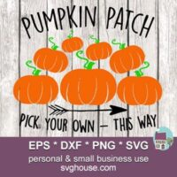pumpkin patch svg